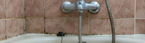 Selling Your Home? Don't Forget Tile and Grout Cleaning, Restoration